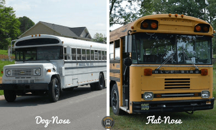 dog-nose flat-nose school bus